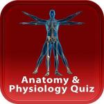 Anatomy and physiology quiz online